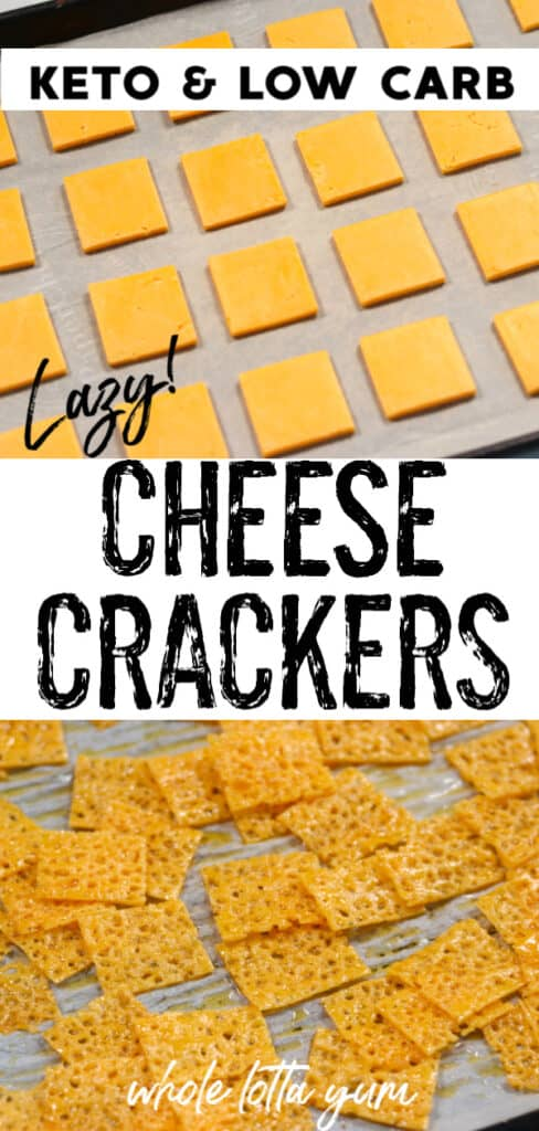 cheese crackers with sliced cheese