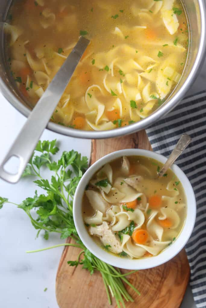 chicken noodle soup instapot