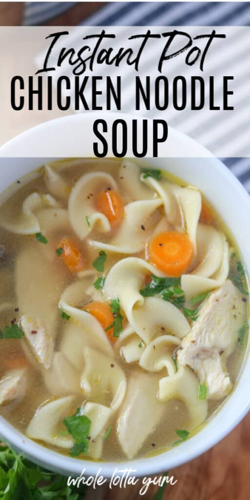 pressure cooker chicken noodle soup in a bowl