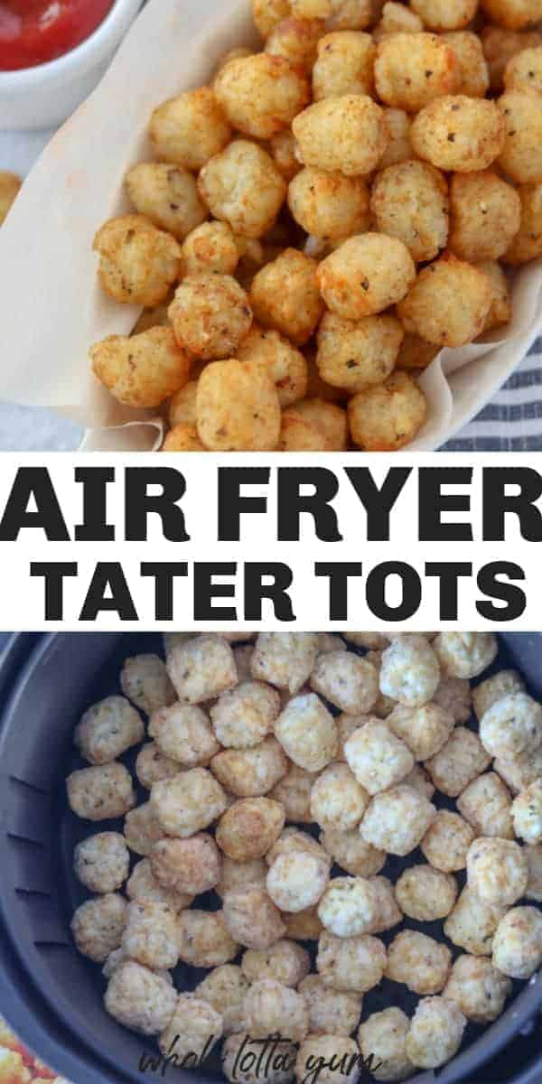 air fryer frozen tater tots Pinterest pin