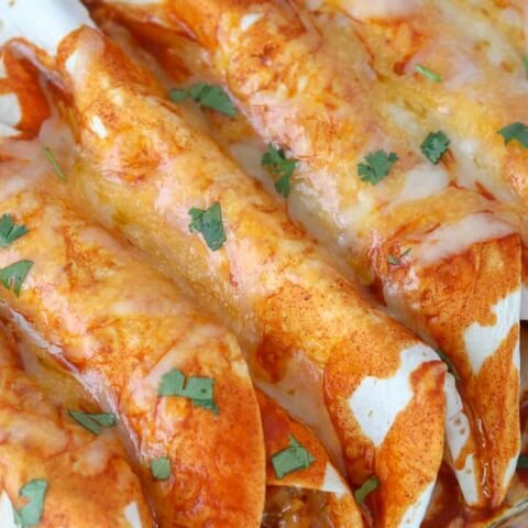 low carb enchiladas in the pan after baking