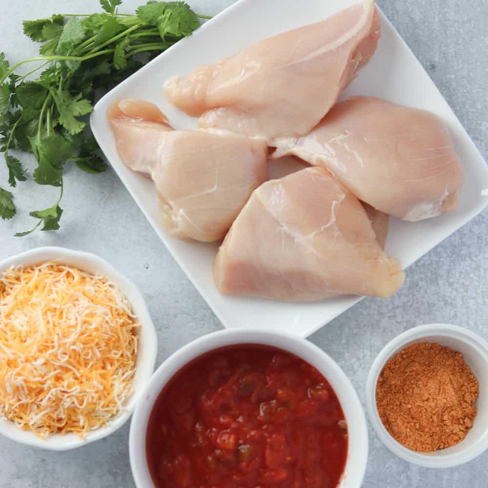 oven baked salsa chicken