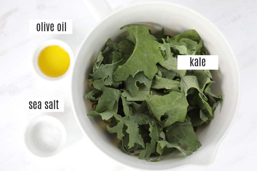 kale air fryer recipe ingredients photo