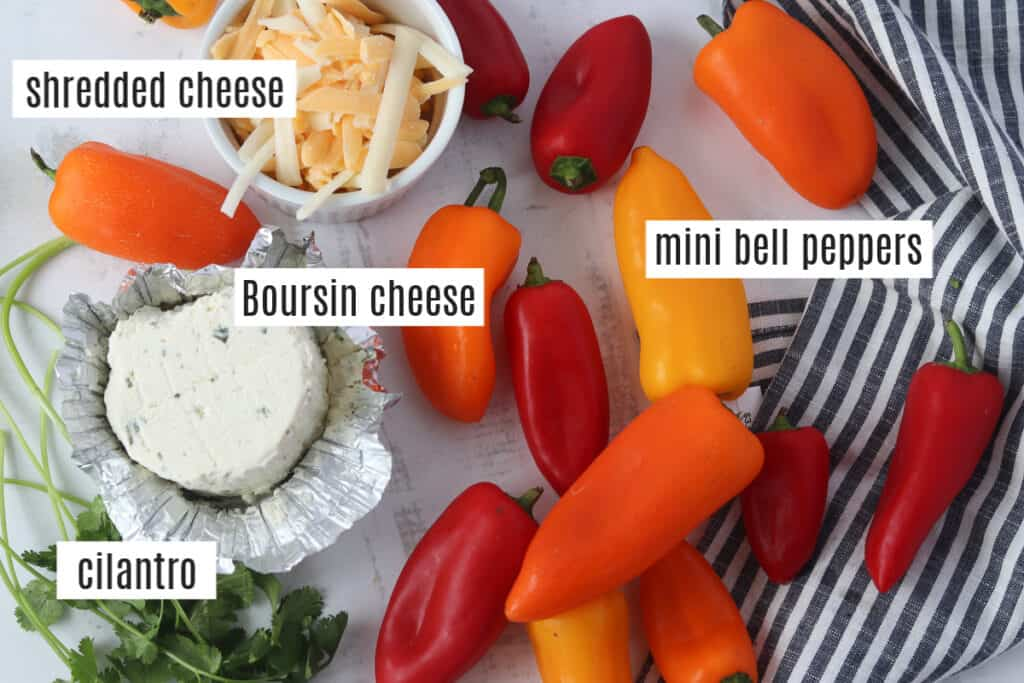 stuffed mini peppers vegetarian appetizer ingredients photo