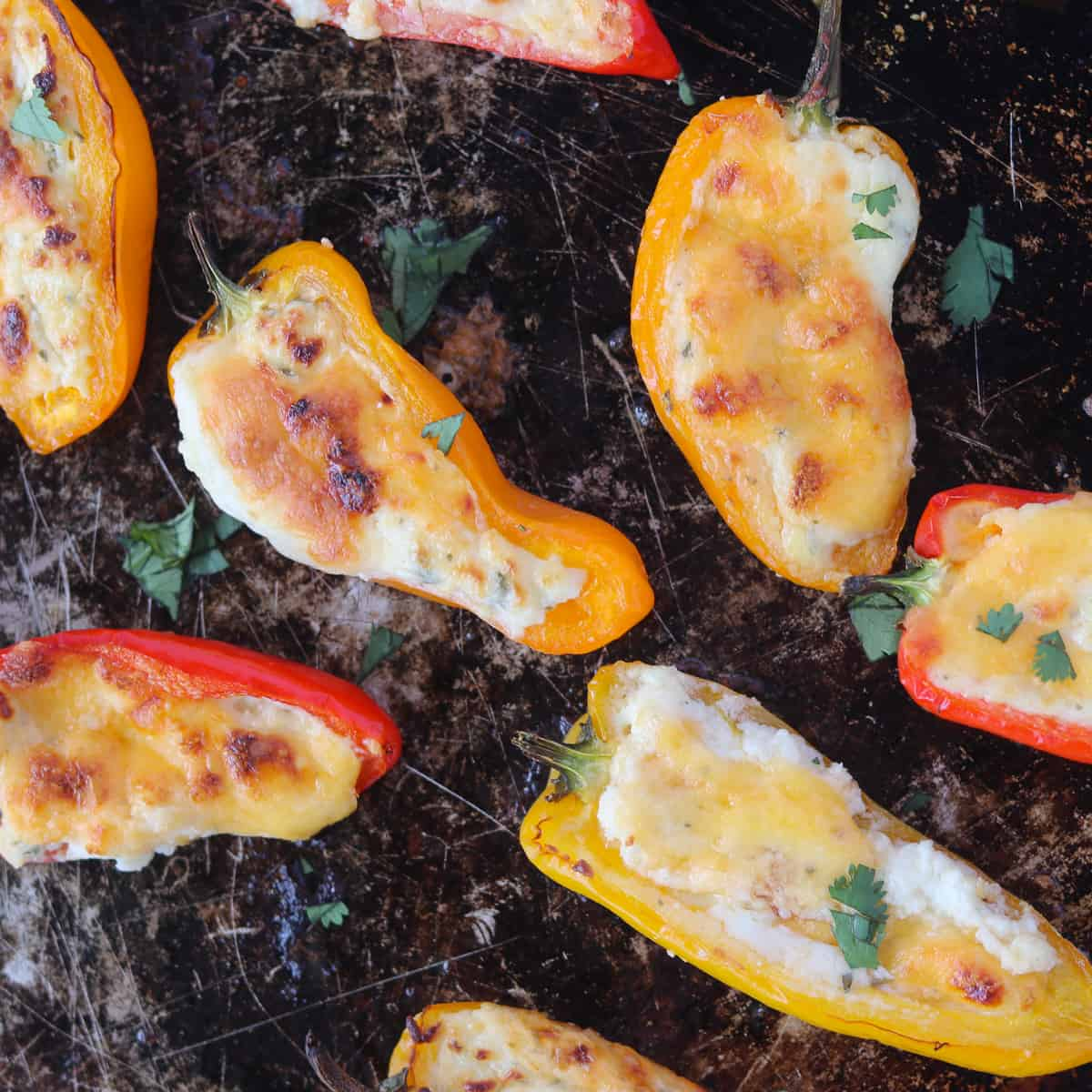 stuffed mini sweet peppers on a baking sheet after cooking with melted cheese