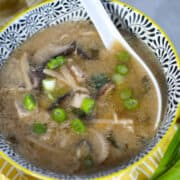 pressure cooker hot and sour soup in a bowl with an Asian spoon